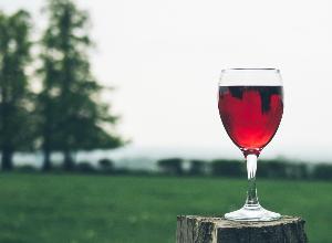 Alcool, tolérance zéro ?