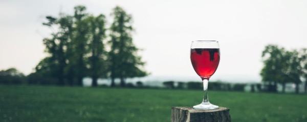L'alcool, risque zéro